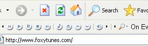 FoxyTunes (IE) Ekran Görüntüleri - 2