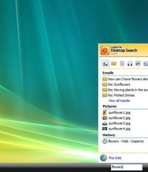 Copernic Desktop Search Ekran Görüntüleri - 2