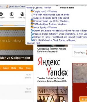 Chrome Reader Plus Ekran Görüntüleri - 3