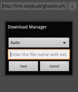 Easy Downloader Ekran Görüntüleri - 2