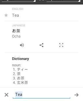 Google Translate Ekran Görüntüleri - 4