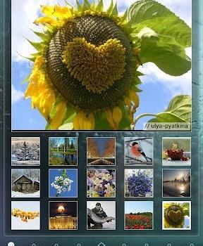 Yandex.Shell Ekran Görüntüleri - 3