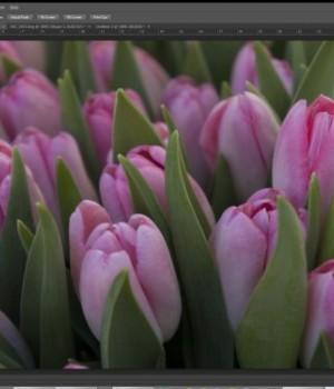 Adobe Photoshop CS6 Ekran Görüntüleri - 3