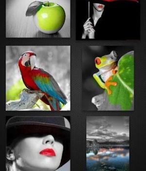Color Splash FX Ekran Görüntüleri - 2