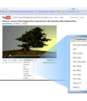 Easy YouTube Video Downloader Ekran Görüntüleri - 1