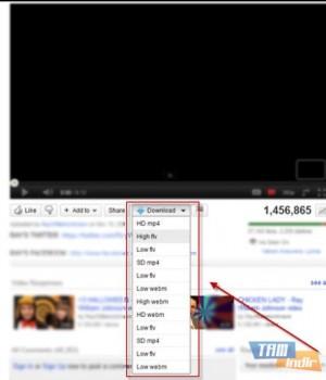 Flash Video Downloader Ekran Görüntüleri - 1