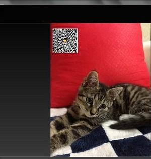 Free QR Barcode Generator Ekran Görüntüleri - 1