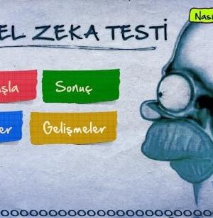 Görsel Zeka Testi Ekran Görüntüleri - 4