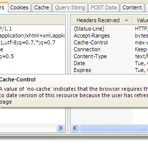 HttpWatch Basic Edition Ekran Görüntüleri - 1