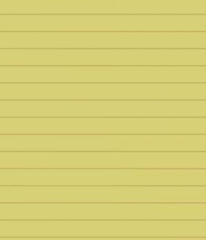 Notepad Ekran Görüntüleri - 2