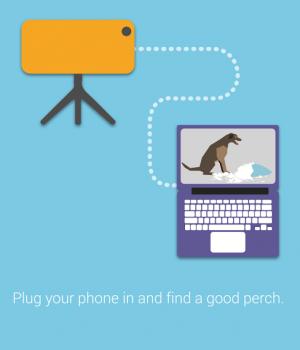 Perch Ekran Görüntüleri - 3