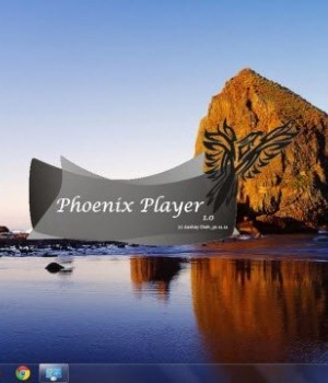 Phoenix Player Ekran Görüntüleri - 5