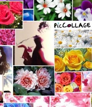Pic Collage Ekran Görüntüleri - 3
