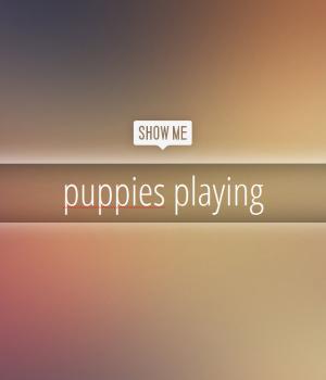 Show Me Non Stop Ekran Görüntüleri - 2