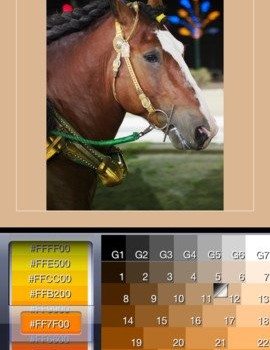 Squaready Ekran Görüntüleri - 1