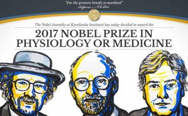 2017 Nobel Tıp Ödülleri Sahiplerini Buldu