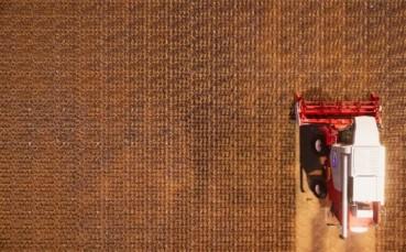 Yeni Simülasyon Oyunu Real Farm ile Gerçek Bir Çiftçi Olabileceksiniz