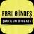 Ebru Gündeş -Şarkıları Bulmaca