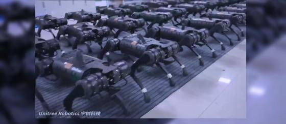 Çin'in Robotik Köpek Ordusu Sosyal Medyanın Gündeminde