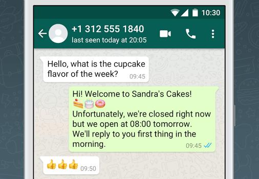 WhatsApp Business Ekran Görüntüleri - 3