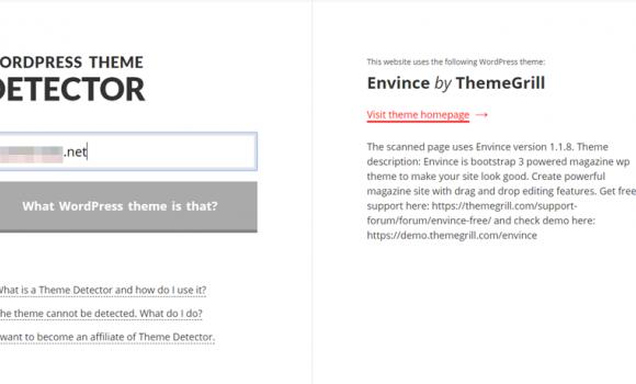 WordPress Theme Detector Ekran Görüntüleri - 2
