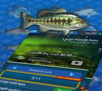 fish4 - 4
