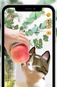 Meow! - AR Cat Ekran Görüntüleri - 4
