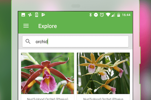 PlantSnap Ekran Görüntüleri - 1