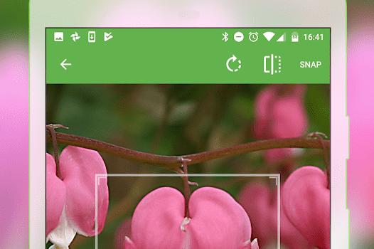 PlantSnap Ekran Görüntüleri - 3