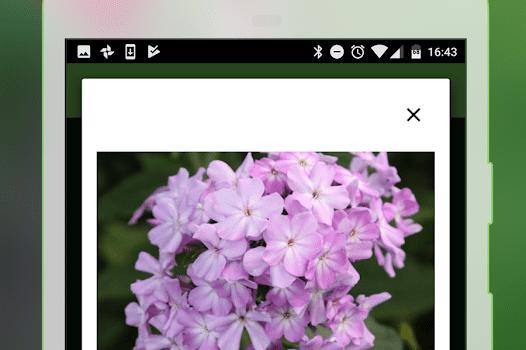 PlantSnap Ekran Görüntüleri - 5