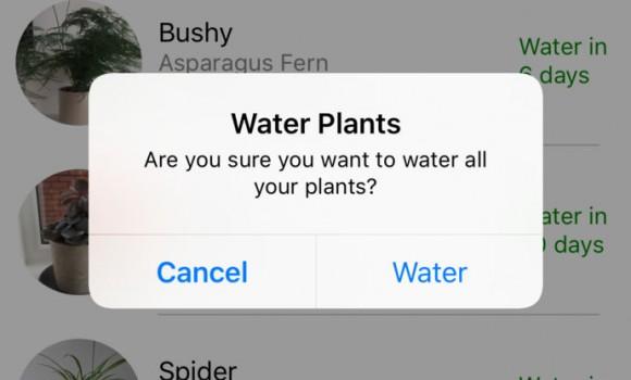 Planty Ekran Görüntüleri - 4