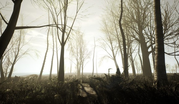Desolation - 4