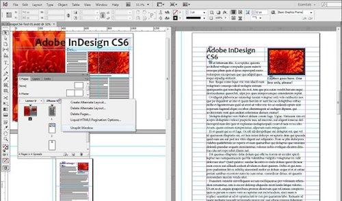 Adobe Creative Suite 6 Design Standard Ekran Görüntüleri - 2