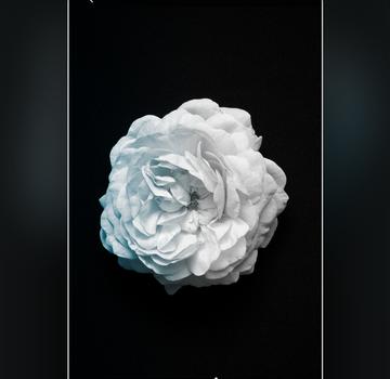 Carbon Ekran Görüntüleri - 3