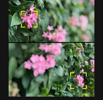 Focos Ekran Görüntüleri - 3