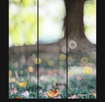 Focos Ekran Görüntüleri - 4