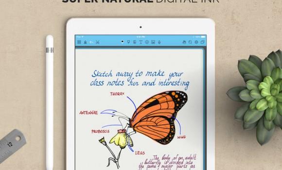 Noteshelf Ekran Görüntüleri - 2