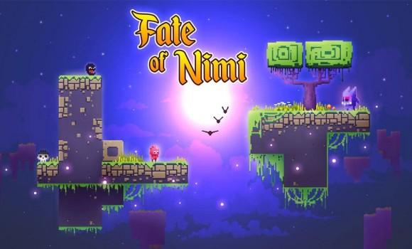 Fate of Nimi 1 - 1