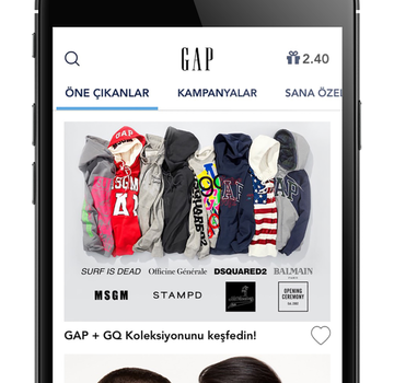 GAP Türkiye Ekran Görüntüleri - 1