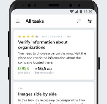 Yandex.Toloka Ekran Görüntüleri - 2