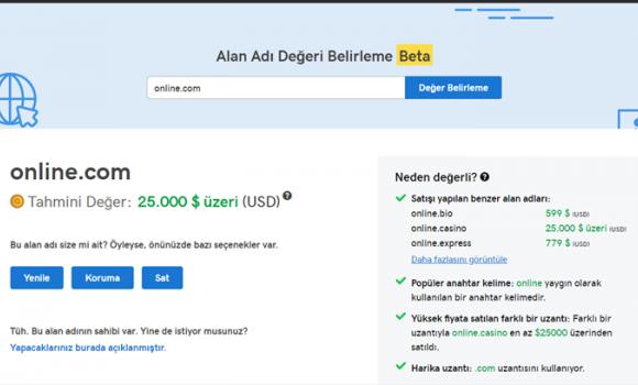 GoDaddy Alan Adı Değerlemesi Ekran Görüntüleri - 2