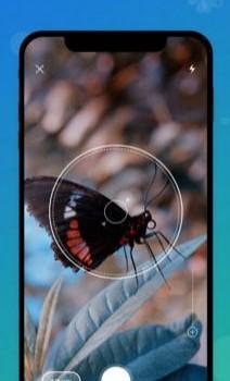 Picture Insect Ekran Görüntüleri - 1