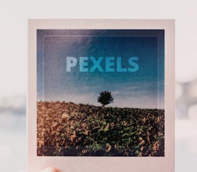 Pexels Ekran Görüntüleri - 15