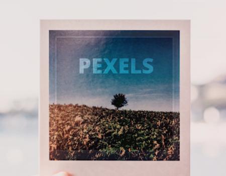 Pexels Ekran Görüntüleri - 8