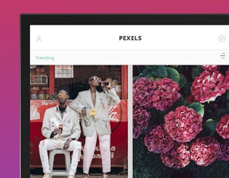 Pexels Ekran Görüntüleri - 9