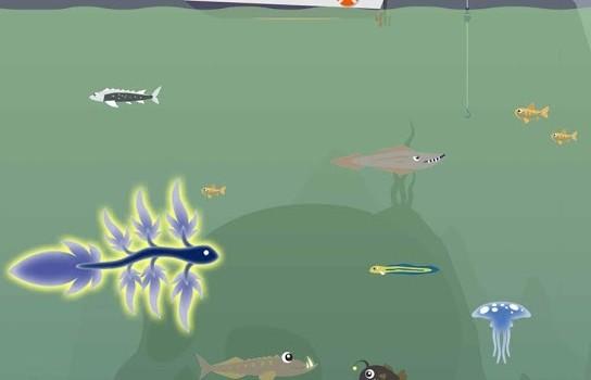 Fisher Dash Ekran Görüntüleri - 3