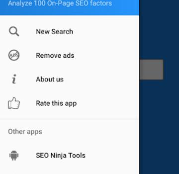 Website SEO Analyzer Ekran Görüntüleri - 2