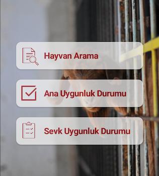 Türkvet Ekran Görüntüleri - 1