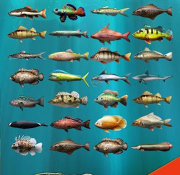 Let's Fish Ekran Görüntüleri - 9