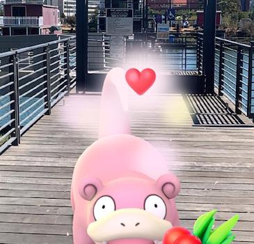 Pokemon GO Ekran Görüntüleri - 6